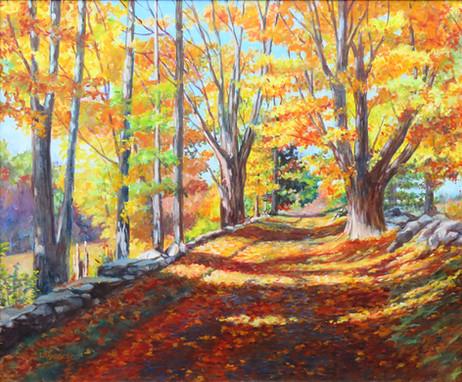 Autumn in Hardwick