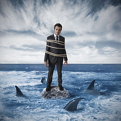 A Man with sharks