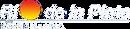 Logo Rio1-cutout-cutout.png
