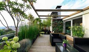 Crea Un Oasis En Casa Con Plantas