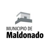 Municipio Maldonado.png