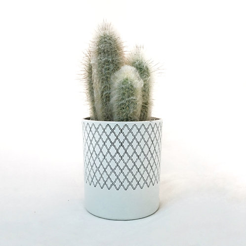 WHITE GLASS POT WITH SILVER DETAIL