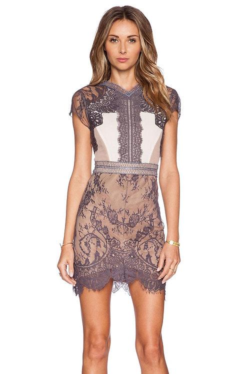 VIP Black/white and nude colour  lace mini dress