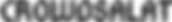 CS Logo-schwarz.png