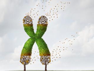 Грижовно ДНК -  грижата за психичното ви  здраве!