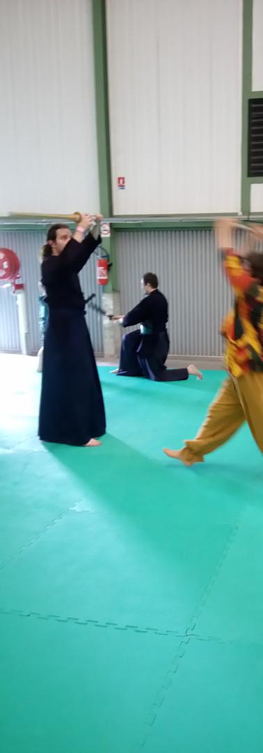 ducorpsaucoeurarkenicel Chantal Boilot Arts martiaux