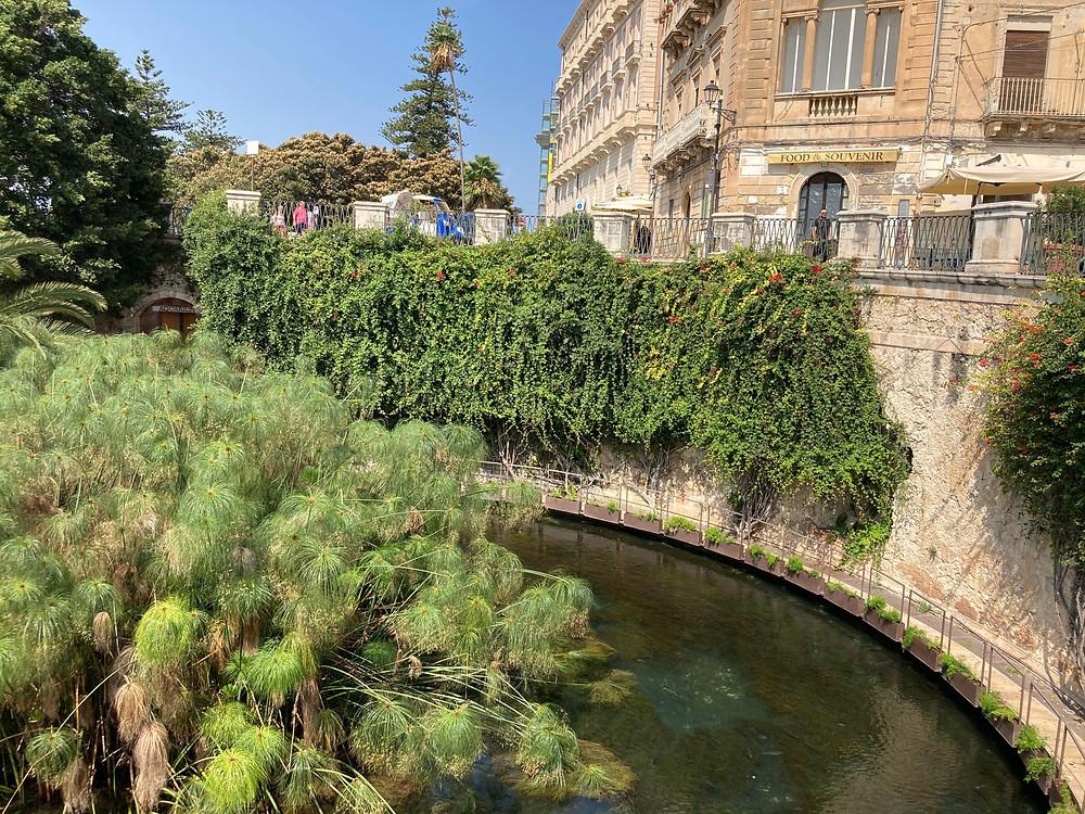 Fonte Aretusa, Cosa vedere a Ortigia