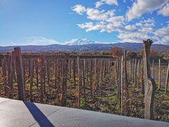 Degustazione vini Etna, Vacanze invernali in Sicilia