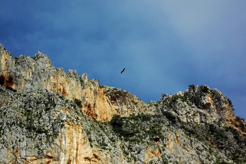 Rocche del Crasto, Cosa visitare nel Parco dei Nebrodi