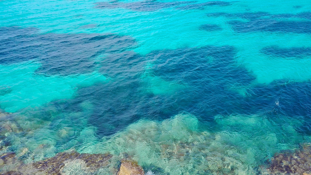 Le acque di Favignana