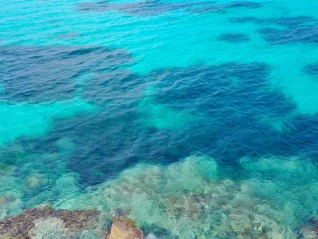 Le 7 spiagge più belle di Favignana per le tue vacanze in Sicilia