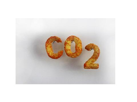 CO2 1.jpg