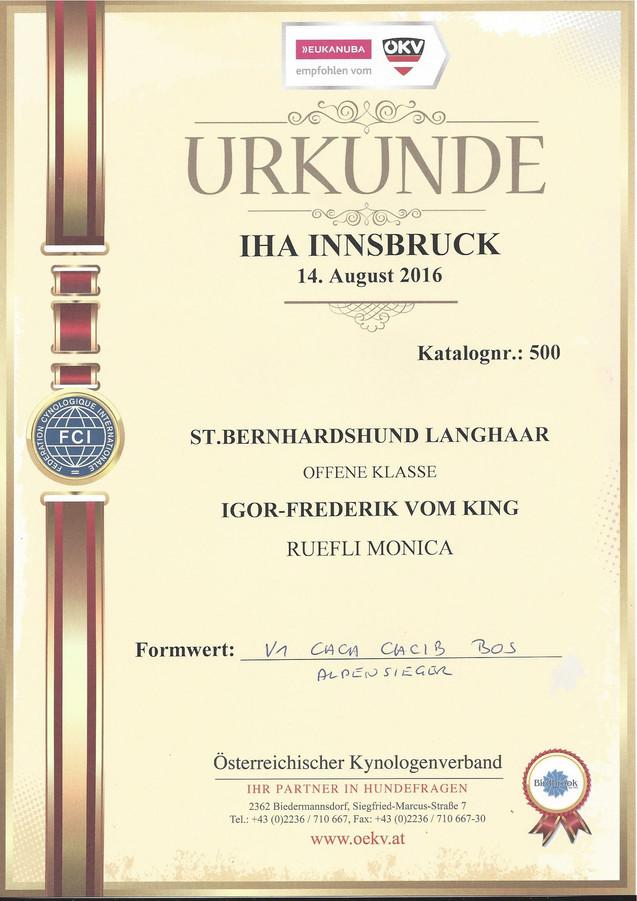 Igor Urkunde Insbruck_klein.jpg