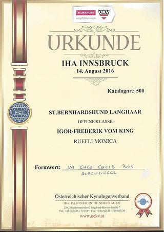 Igor Urkunde Insbruck_100H.jpg