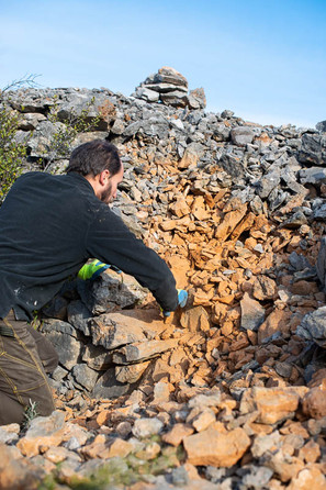 Restauration d'un mur en pierre sèche