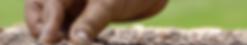 Screen Shot 2020-08-09 at 13.27.13.png