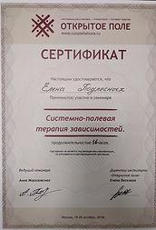 Сертификат Модуль Зависимость.jpg