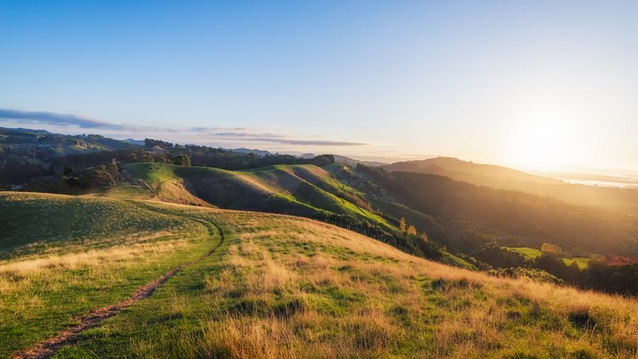 papamoa-hill-new-zealand