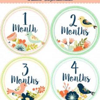 Baby Monthly Milestone Stickers: Floral Birds