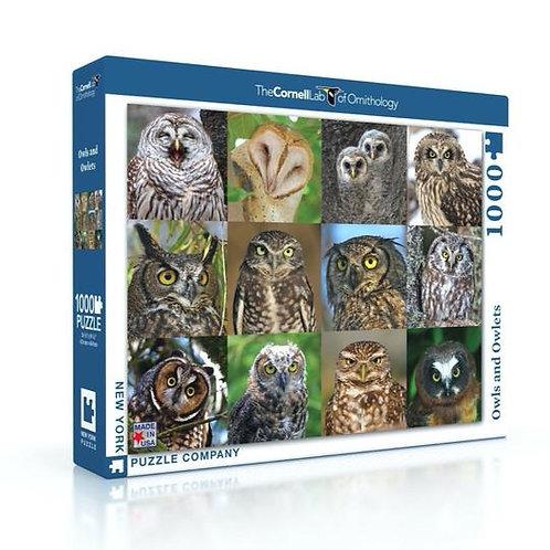 Owls & Owlets Puzzle