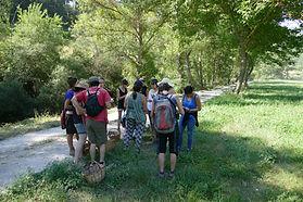 itinerari botanic
