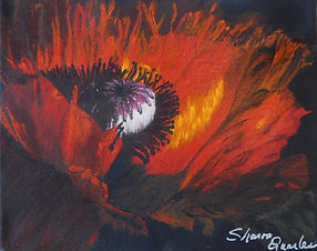 Passion Flame  Poppy