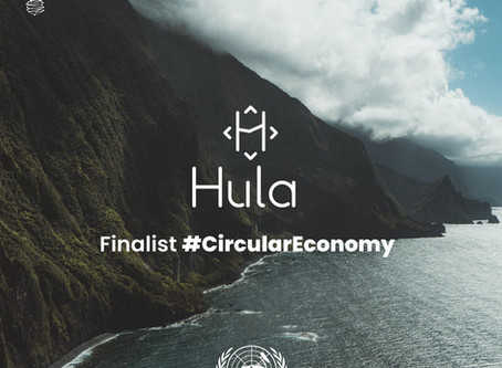 Our Hula App and the UN
