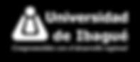 black logo uni.png