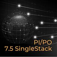SAP Netweaver PI/PO 7.5 Single Stack