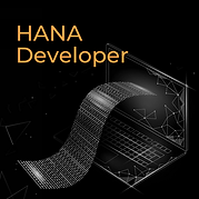 HANA Developer