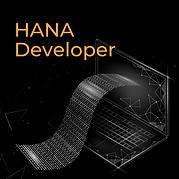 HANA Developer