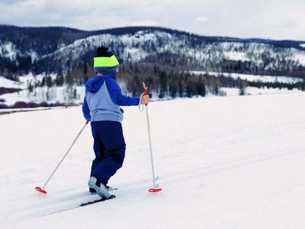 Cross-country skiing in Peisey-Vallandry