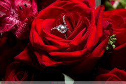 Padial_Weddings_©2019-12