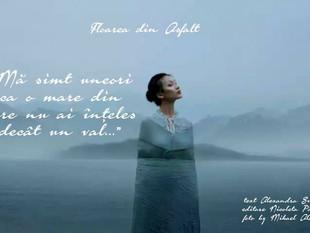 """""""Mă simt uneori ca o mare din care nu ai înţeles decât un val..."""""""