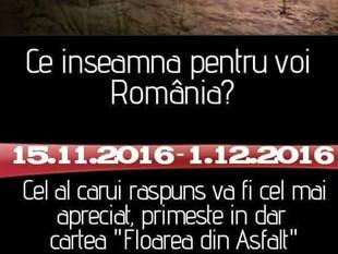 """Romania mea"" de Alina Laura Mihaila"