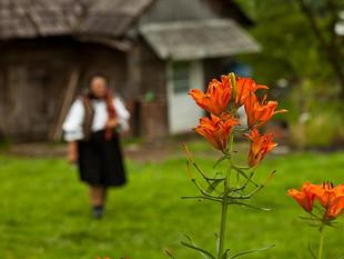Bunica Floarea