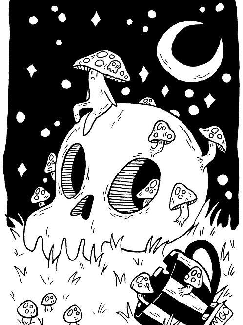 Poison • Print