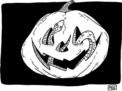 Snake Pumpkin • Print