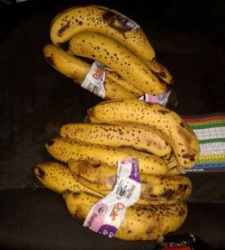 Old Brown Banana Fan Art