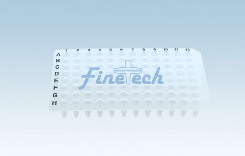 PCR-P01-N-P.jpg