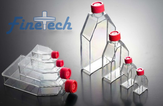 cell culture flask_1