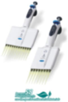 S Series Multichannel Micropipette