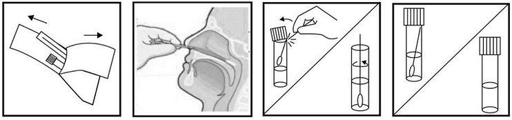 Nasal Specimen Collection Kit