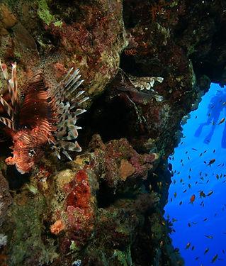 Red Sea Blue Hole.jpg