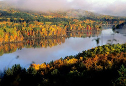 wynne lake fall