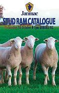 JANMAC 2020 Stud Ram Flyer Web_01.jpg