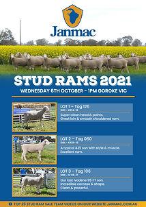 Janmac Stud Catalogues 2021 WEB-1.jpg