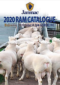 2020 Rams.jpg