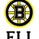 Mini15_Bruins Name