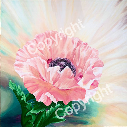 Coral Reef Poppy Stretched Canvas Giclee Print